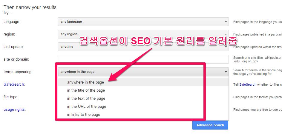 구글 확장 검색 옵션 항목이 SEO와 연결 된다.